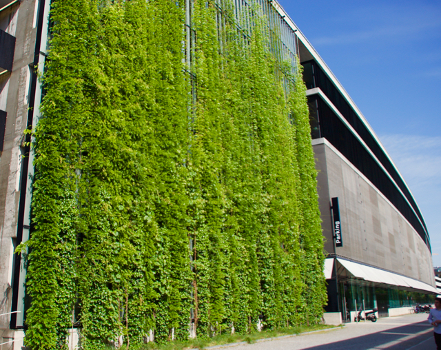 Green Walls To Adorn Business School The University Times